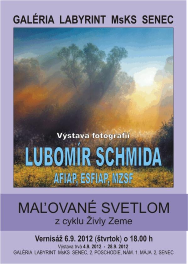 Виставка Л.Шміда