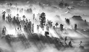 PAAT-Silver-Medal_Lajos_Nagy_Romania_Early_Morning_Mist