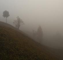 Густий туман