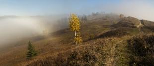 Магія осіннього туману 2