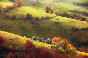 Autumn-Pastoral