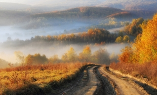 Road-in-Autumn